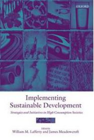 Implementing Sustainable Development: Strategies and Initiatives in High Cons…