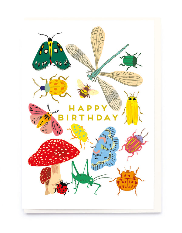 Happy Birthday Bug Collection