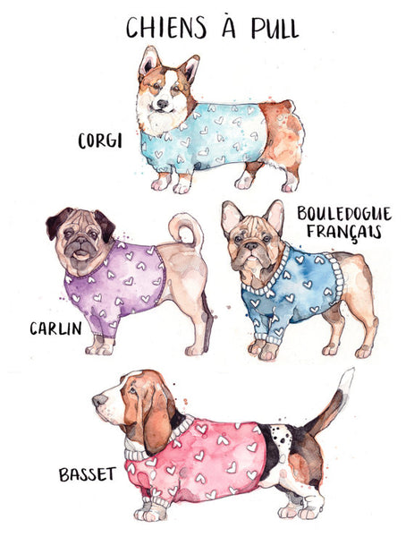ILLUSTRATION-CHIENS À PULL