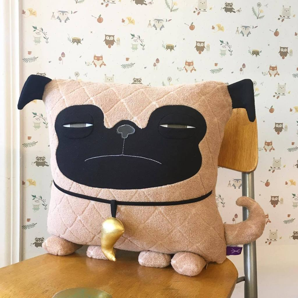 COUSSIN - PUG