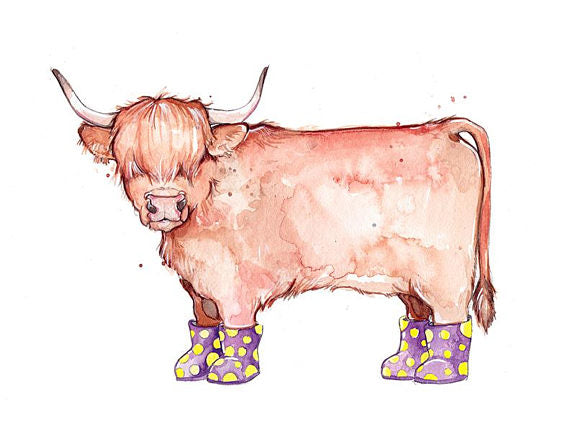 ILLUSTRATION-VACHE POILUE