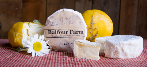 Balfour Farm Marcy Cheese | Revittle