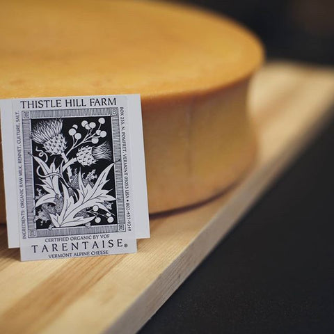 Thistle Hill Farm's Tarentaise with Logo | Revittle