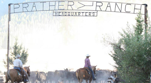 Prather Ranch | Revittle
