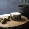 Mozzarella Company Goat Rounds Herbs of Provence | Revittle