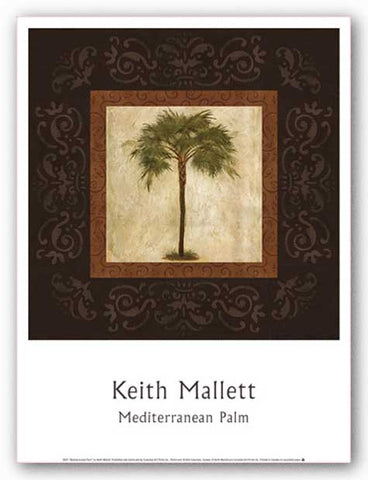 Mediterranean Palm by Keith Mallett