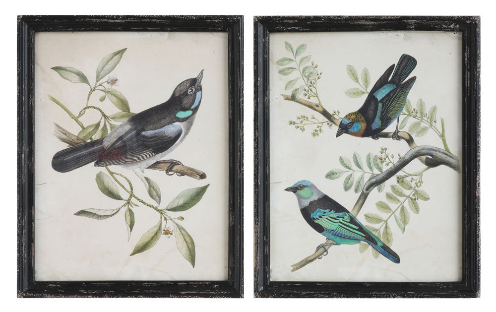 "18-3/4""W x 23-1/2""H Wood Framed Wall Décor w/ Bird, 2 Styles, Truck Ship"