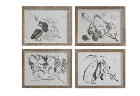 "23-1/2""W x 18-1/2""H Wood Framed Wall Décor w/ Fruit Branch, 4 Styles, Truck Ship"