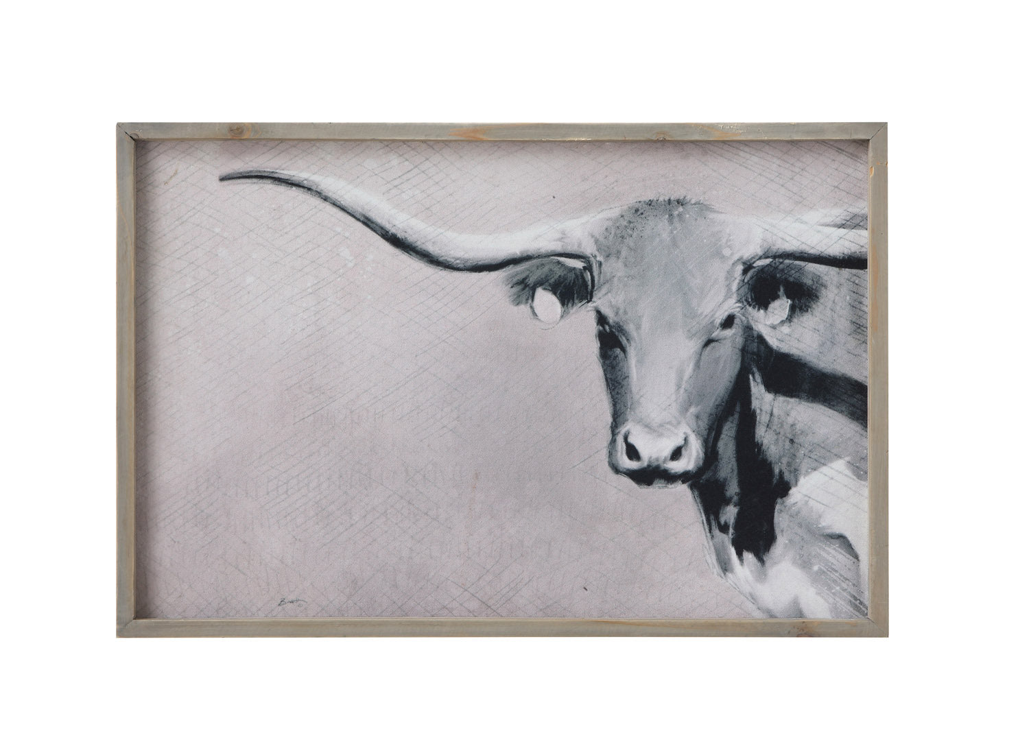 "24""W x 16""H Wood Framed Canvas Wall Décor w/ Longhorn ©"