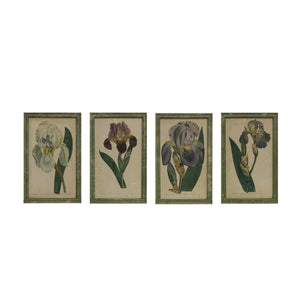 "13-1/2""W x 21-1/4""H Wood Framed Wall Décor w/ Vintage Reproduction Iris Image, Distressed Green Finish, 4 Styles"