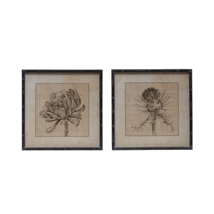"20"" Square Wood Framed Wall Décor w/ Botanical Image, 2 Styles, Truck Ship"