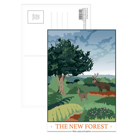 The New Forest, Hampshire Postcard Pack