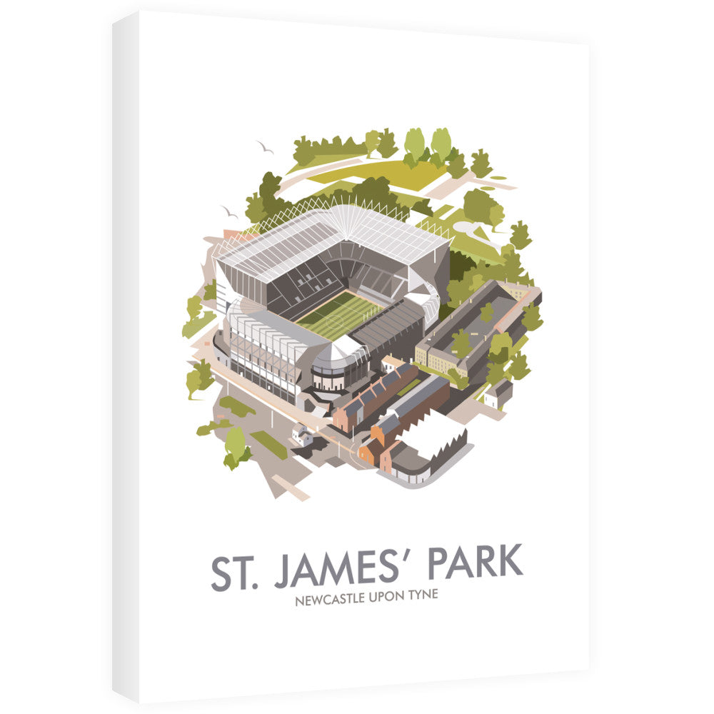St James Park, Newcastle Upon Tyne 40cm x 60cm Canvas