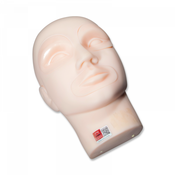 Practice PMU Mannequin Head for Inserts