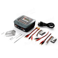 SkyRC D100 AC/DC Dual Balance Charger Discharger For RC Models - BLUENYLEDIRECT