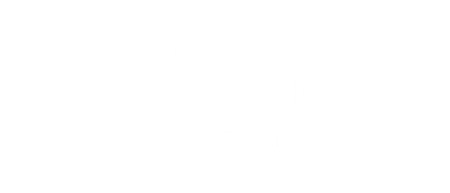 Pai Technology