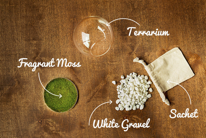 Components of Orbella Fragrant Moss kit