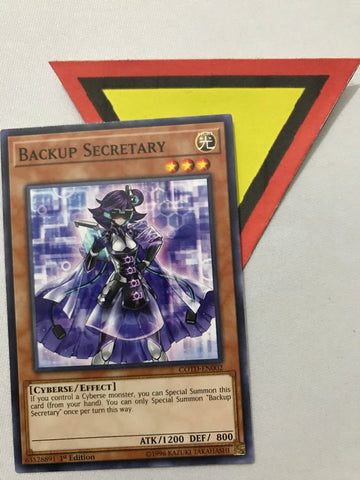 BACKUP SECRETARY - COMMON - COTD-EN002 - 1ST