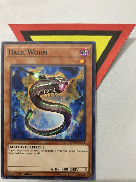 HACK WORM / COMMON - Various - 1ST