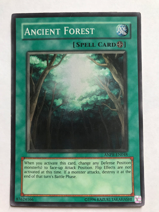 Ancient Forest - Super - ANPR-EN048