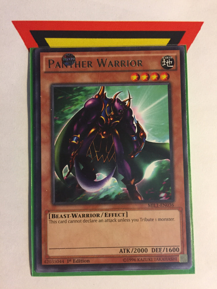 PANTHER WARRIOR - RARE - VARIOUS - 1ST