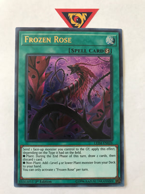 Frozen Rose / Ultra - LED4-EN026 - 1st