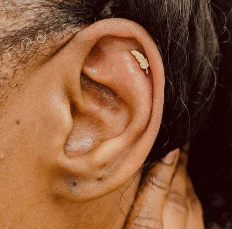 Ear Cartilage Jewelry