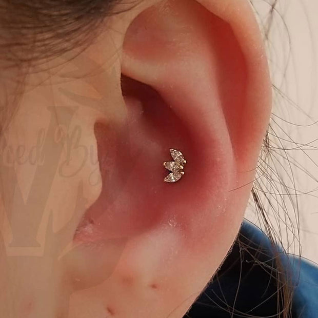 2 Conch Piercing in Mississauga