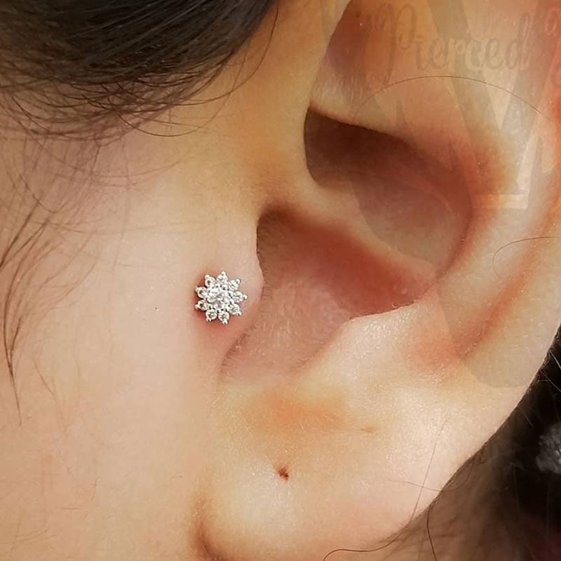 2 Tragus Piercings in Mississauga