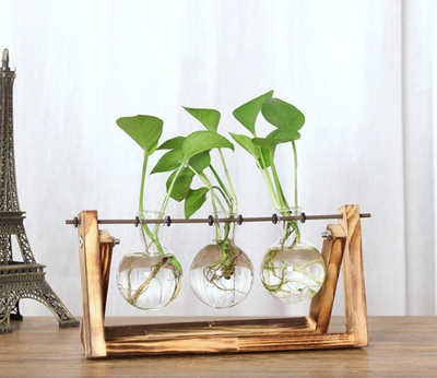 VINTAGE WOOD AND GLASS TERRARIUM PLANT HOLDERS - Pamperpal