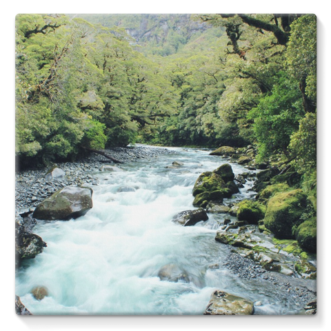 River Stretched Eco-Canvas