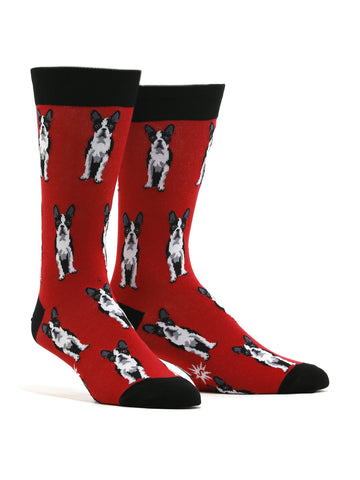 Men's Boston Terrier Socks