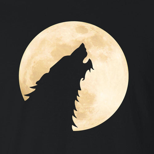 Dire Moon - Women's Tee Shirt