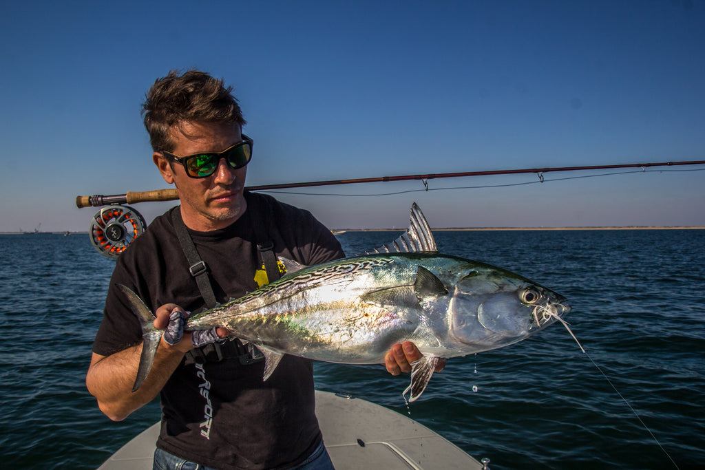 Get in on the Action - Fall False Albacore part 1