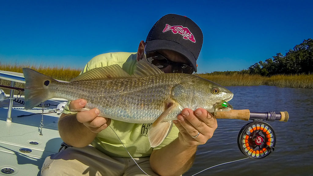 Low tide redfish on fly.