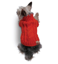 The combo- A Sweater for your pup and a Scarf for you