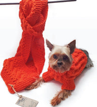 The combo- A Sweater for your pup and a Scarf for you - Lick You Silly Pet Products Shop