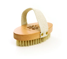 Bestow Body Brush - The Organic Facialist