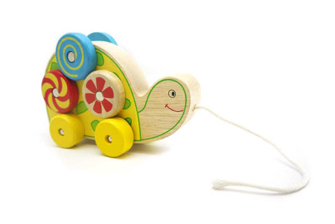 Pull Along Spin Pattern Turtle-Lilypond Kids