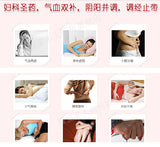 Wu Ji Bai Feng Wan (36g) Regulates Menstruation Dysmenorrhea 乌鸡白凤丸 TongRenTang
