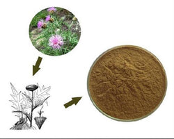 100% Rhaponticum Carthamoides (Willd) Maral Root Extract Powder 10:1  鹿根提取物