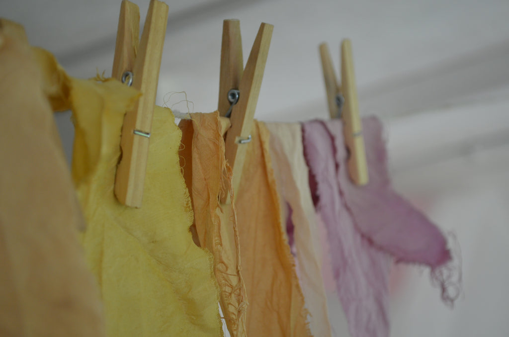 Natural Dye Workshop. The Barn at West End