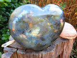 POLISHED LARGE LABRADORITE HEART x 1 from Madagascar, Tulear - TopRock