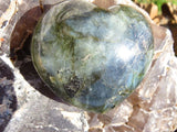 POLISHED LABRADORITE HEARTS x 2 from Madagascar, Tulear - TopRock