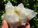 2 Natural white cactus quartz clusters - Top Rocks