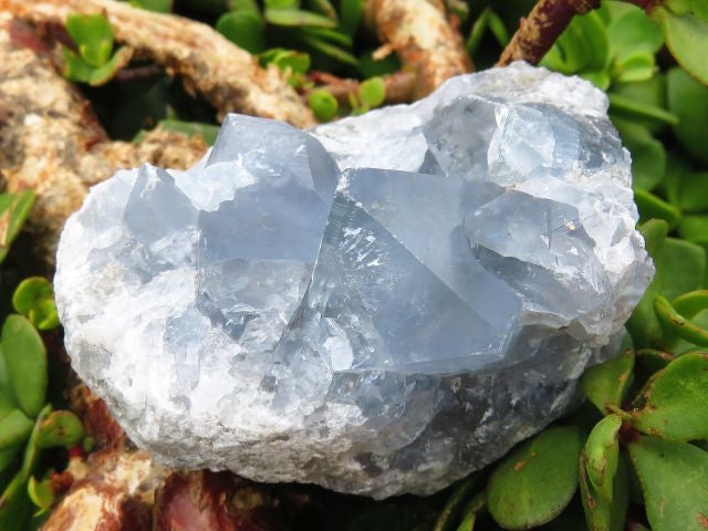 6 Natural celestite specimens - Top Rocks