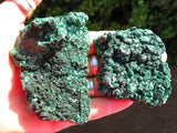 7 Natural silky malachite specimens - Top Rocks