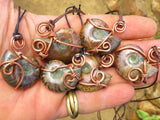 POLISHED OPALISED AMMONITE WIRE WRAPPED PENDANTS - sold per piece - from Tulear , Madagascar - TopRock