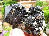 12 Natural black schorl specimens - TopRock