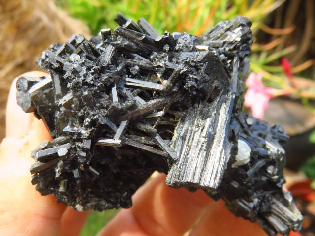 NATURAL BLACK SCHORL SPECIMENS x 6 from Namibia, Erongo